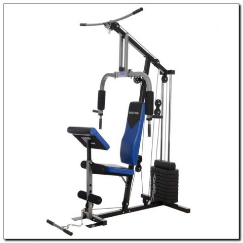 HEKTOR 3 ATLAS 100 LBS (45 KG) ONE FITNESS